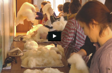 Wool Masterclass, 08 to 14 April, Rambouillet, France